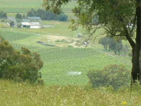 Gippsland Environment Suffering From Pesticide Spray Drift?